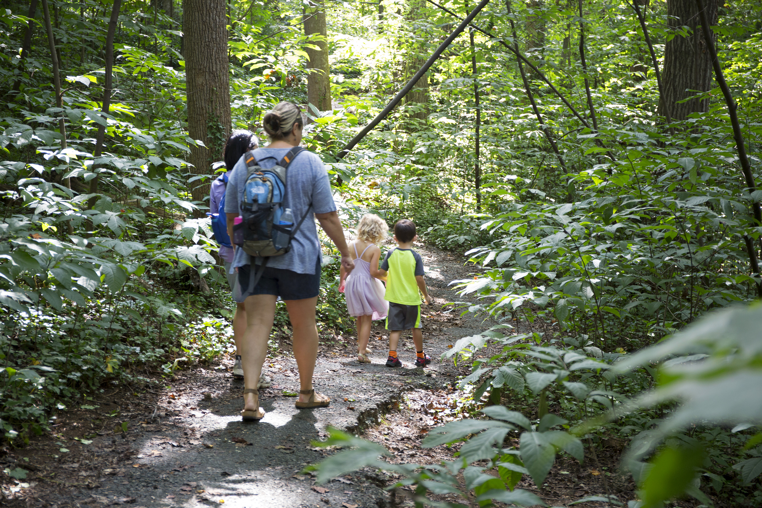 nature walk guided paw walks events explore charlotte nc