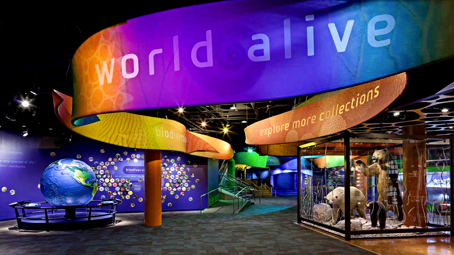 Visit Us Charlotte Attractions Discovery Place Science